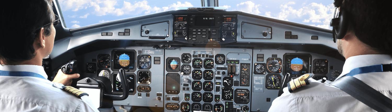 How Do Pilots Make Decisions?