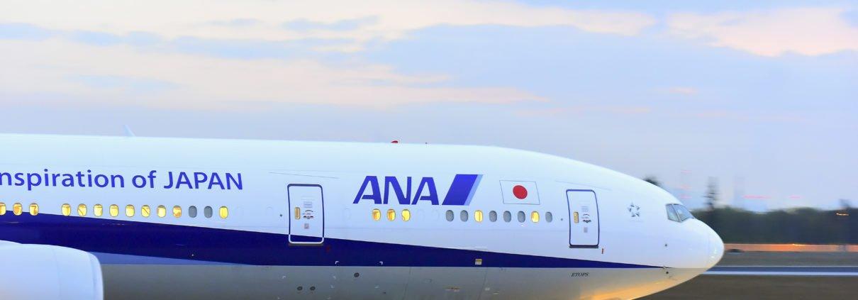 ANA 787 on the ground